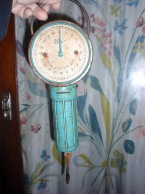 Безмен - декабрь 2010 060.jpg