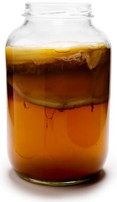 Чайный гриб - Чайный гриб.png