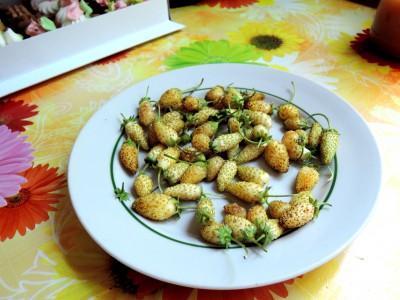 Экзотические овощи и фрукты - DSCN8997.JPG