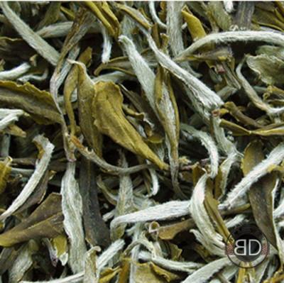 Полезные свойства белого чая - 03.jpg