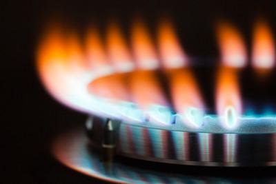 Какая духовка лучше газовая или электрическая - Gas oven.jpg
