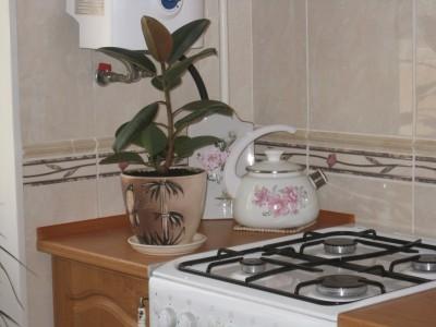 Фантазии на тему кухни: отделка стен - IMG_259877.jpg