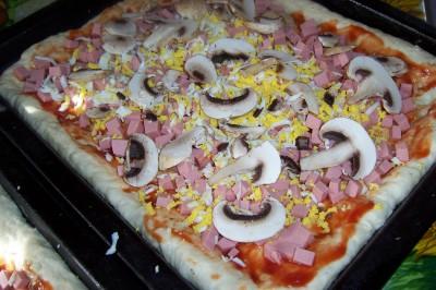 Пирожки и пицца на быстром дрожжевом тесте - 100_7332.JPG