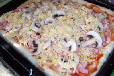 Пирожки и пицца на быстром дрожжевом тесте - 100_7333.JPG