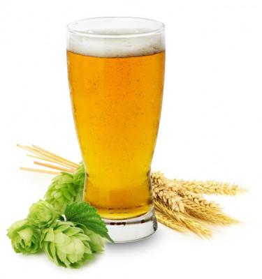 Любите ли вы пиво? - Glass of fresh Beer.jpg