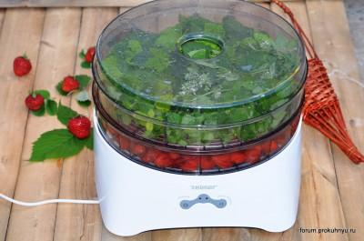 Чай из клубники, мелиссы и листьев смородины - 08 Чай из клубники, мелиссы и листьев смородины.jpg