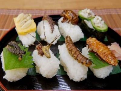 Время менять мясо на насекомых? - 8.jpg
