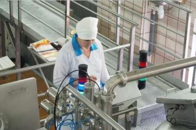 На Алтае выпустили не имеющий аналогов сорт сыра - 9.JPG