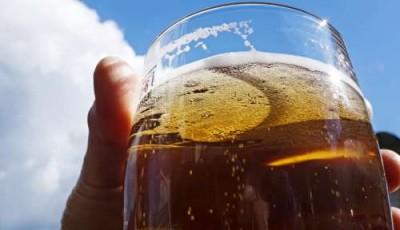 Возвращение к истокам: хлеб и пиво из водорослей? - 1.jpg