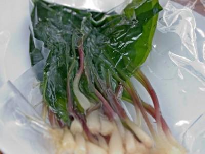Советы по использованию герметизатора - sealed veggies.jpg
