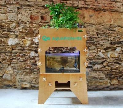 Зелень, растущая быстрее в три раза тепличной, в биоферме от IKEA - 9.JPG