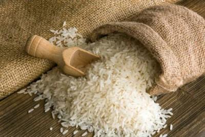 Новый сорт риса растёт в морской воде - 8.jpg