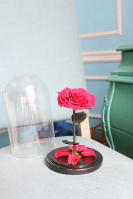 Стабилизированные цветы на кухне - 97e1109b-fc68-4977-98e9-08ffc9a76934.jpg