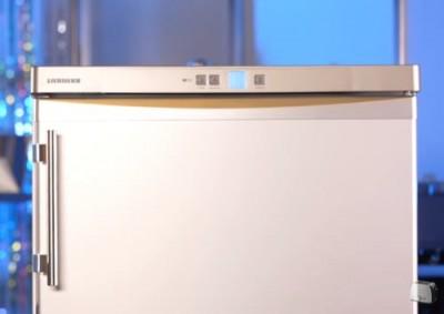 Компактная морозильная камера Liebherr Gsl 1223 20C - 9.JPG