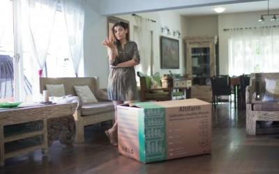 Многоуровневая грядка для городских квартир: продуктовая автономность - 7.jpg