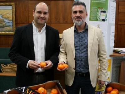 Израильтяне из ARO вывели самый вкусный в мире мандарин - 9.JPG