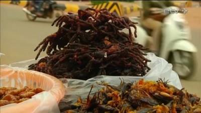 Камбоджийская закуска из жаренных тарантулов может исчезнуть - 8.jpg