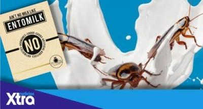 Тараканье молоко или entomilk: создаётся новый суперпродукт? - 9.JPG
