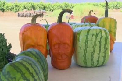 Нескучные фрукты и овощи: тренды маркетинга - 5.jpg