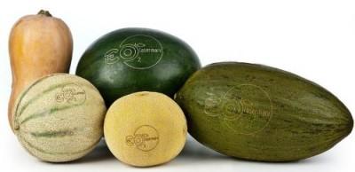 Нескучные фрукты и овощи: тренды маркетинга - 6.jpg