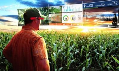 Электрическое сельское хозяйство: Китай затеял глобальный эксперимент - 9.JPG