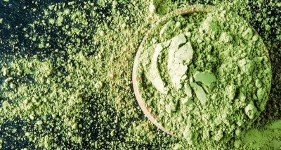 Диета на сине-зелёный водорослях: гипертоникам радоваться? - 10.jpg