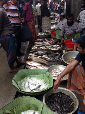 Рыбный базар в Бангладеш - IMG_3370.JPG