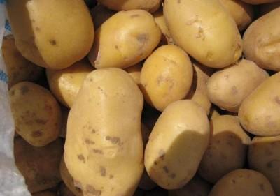 И снова съедобная упаковка: картофель, коллаген, желатин - 9.JPG