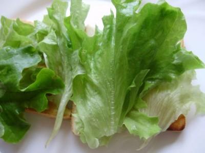 Любимые рецепты бутербродов со свежими овощами - 06_buterbrody.jpg