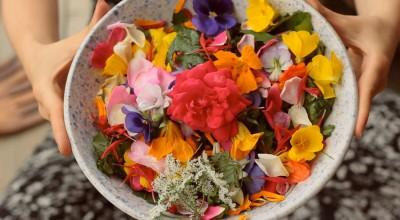 Съедобные цветы: красиво и вкусно, а ещё модно - 9.JPG