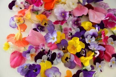 Съедобные цветы: красиво и вкусно, а ещё модно - 10.jpg