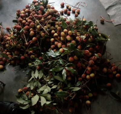 Экзотические овощи и фрукты - IMG_20200530_183500.jpg