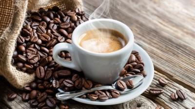 Кофе для бедных или безвредная альтернатива? Цикорий против кофе - 7.jpg
