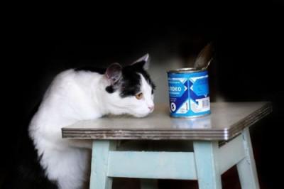 Сгущёное молоко: приятные детские воспоминания. Как его делают? - 8.jpg