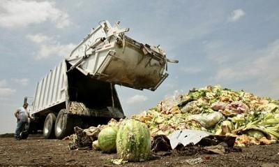 Американцы выбрасывают на помойку 165 миллиардов ежегодно - americans_waste.jpg