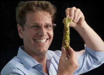 Британский фермер выращивает васаби - wasabi.jpg