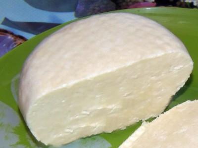 Сыр панир - сыр панир.JPG