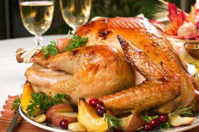 Линия горячей птички или что такое Turkey Talk-Line - turkey_main.jpg
