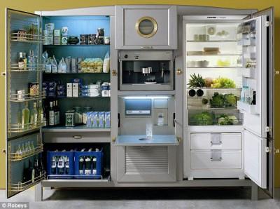 Новый холодильник или новая кухня? - article-2215914-157491A6000005DC-610_634x472.jpg