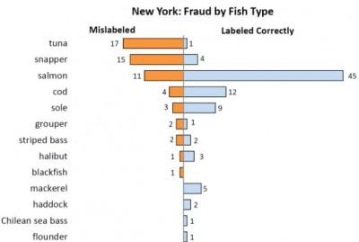 А Вы уверены, что купили именно тунца?  - article-0-16774052000005DC-843_634x427.jpg