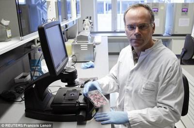 Прототип бургера из стволовых клеток - article-2380308-1B0818B1000005DC-847_634x419.jpg