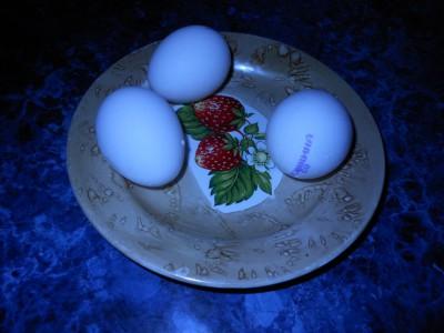 Салаты новогодние  - яйца.jpg