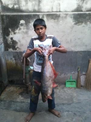 Рыба пангаш 5 кг, купленная на ярмарке. Мальчик - родственник мужа - Рыба пангаш 5 кг, купленная на рыбной ярмарке.jpg