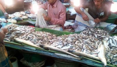 Продолжение рыбного базара. - рыбный базар1.jpg