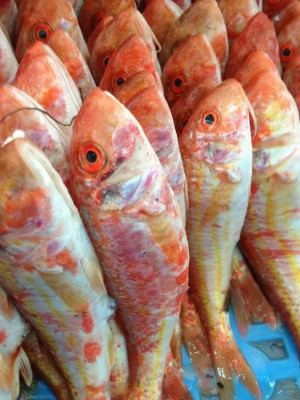 Рыбный базар в Бангладеш - IMG_4294.JPG