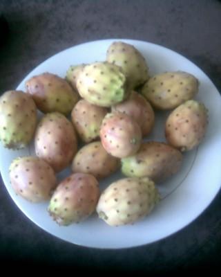 Экзотические овощи и фрукты - Фото0153.jpg