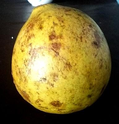 Экзотические овощи и фрукты - CAM00471.jpg